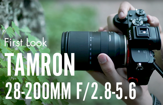 Tamron 28-200mm f/2.8-5.6 Review